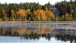 Reflections from the Canadian Shield