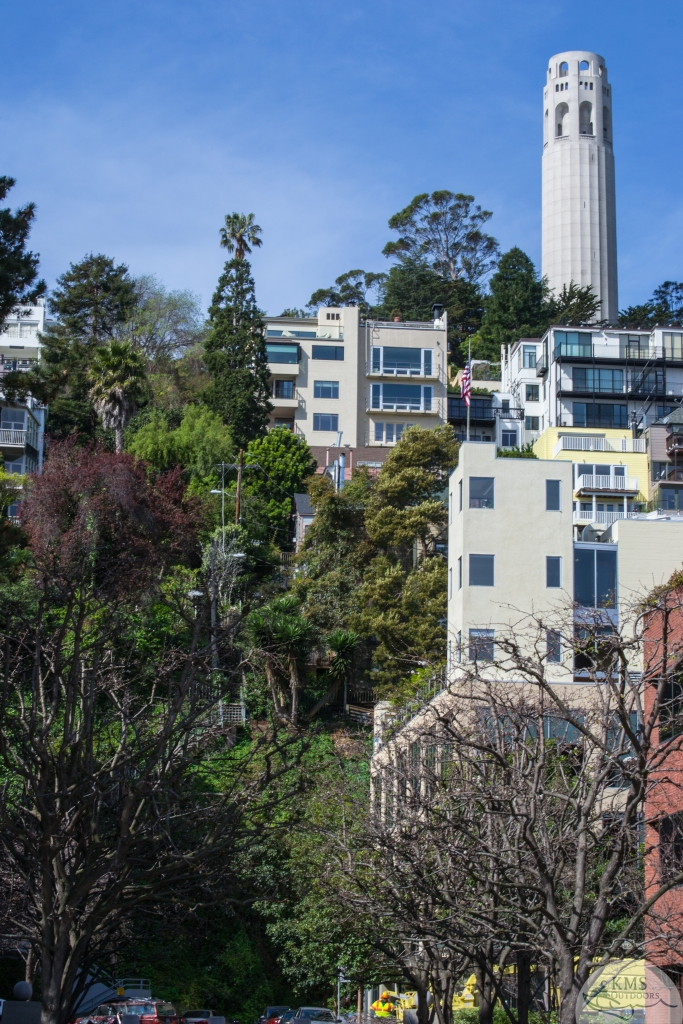 20150323 - stairs up Telegraph Hill climb to coit